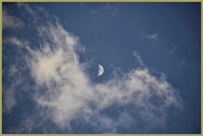 Half Moon Riding on a Scotty Dog