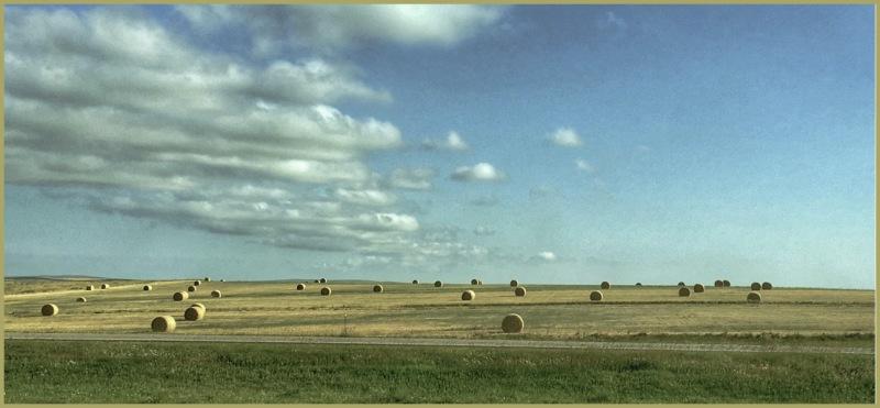 Westward Bound  - South Dakota