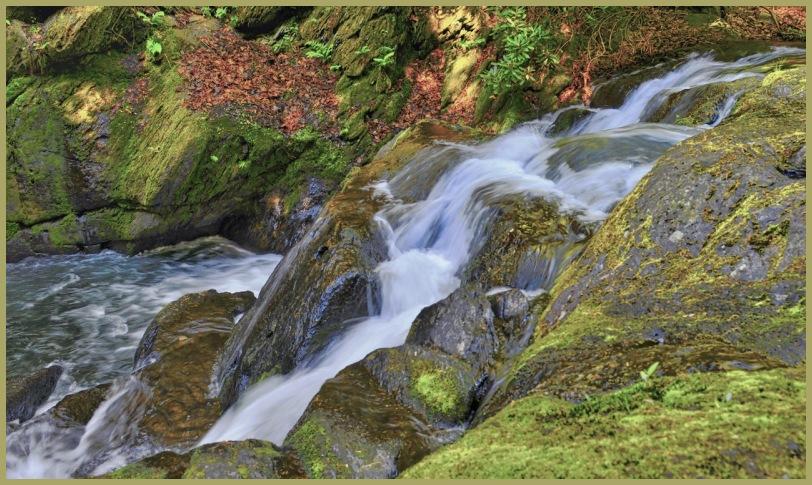 Wild Creek Falls
