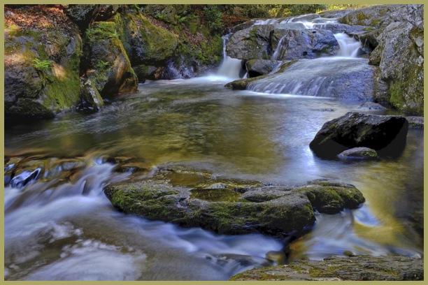Wild Creek,
