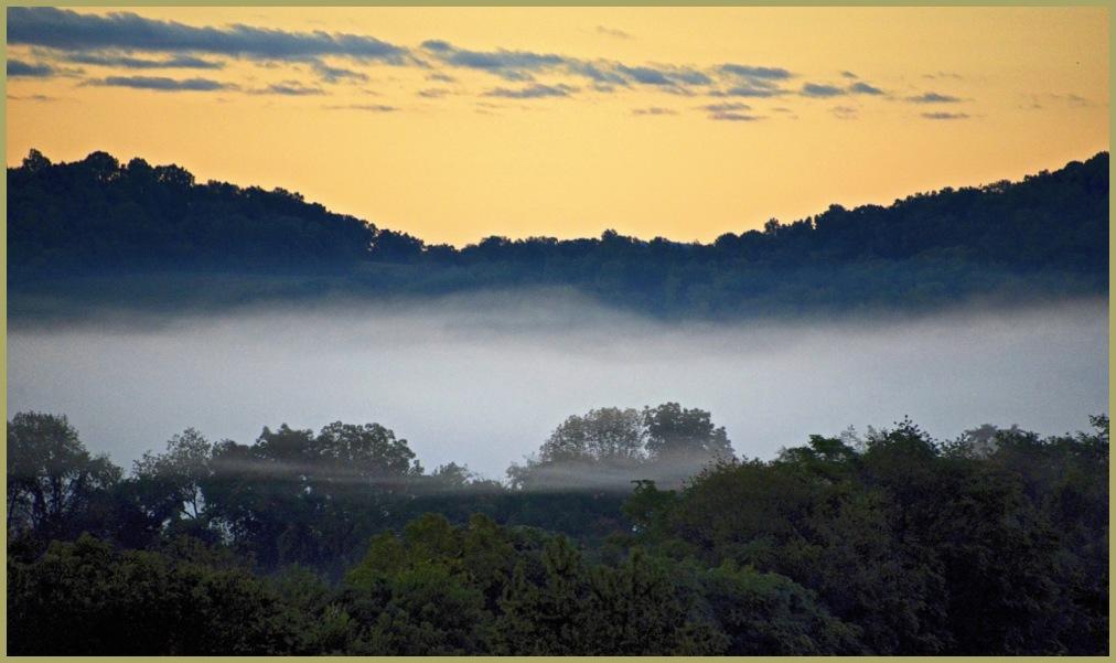 Misty Morning Sunrise