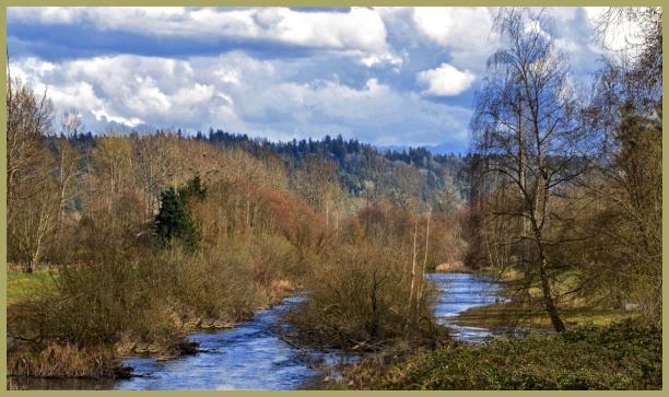 Sammamish River II