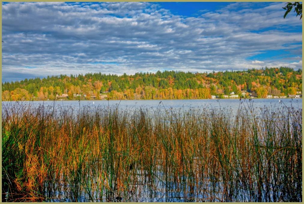 Lake Sammamish October