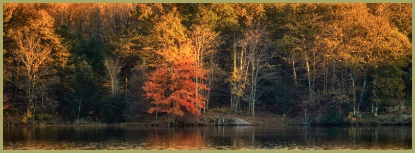 Vermont Autumn