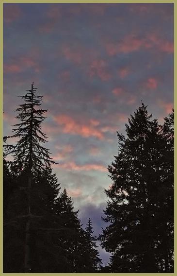 January Evening Sky