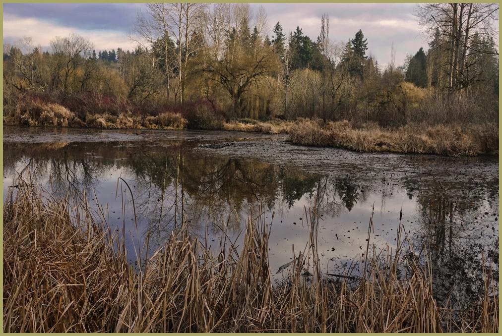 Lagoon at Juanita Bay Park - Kirkland, WA USA