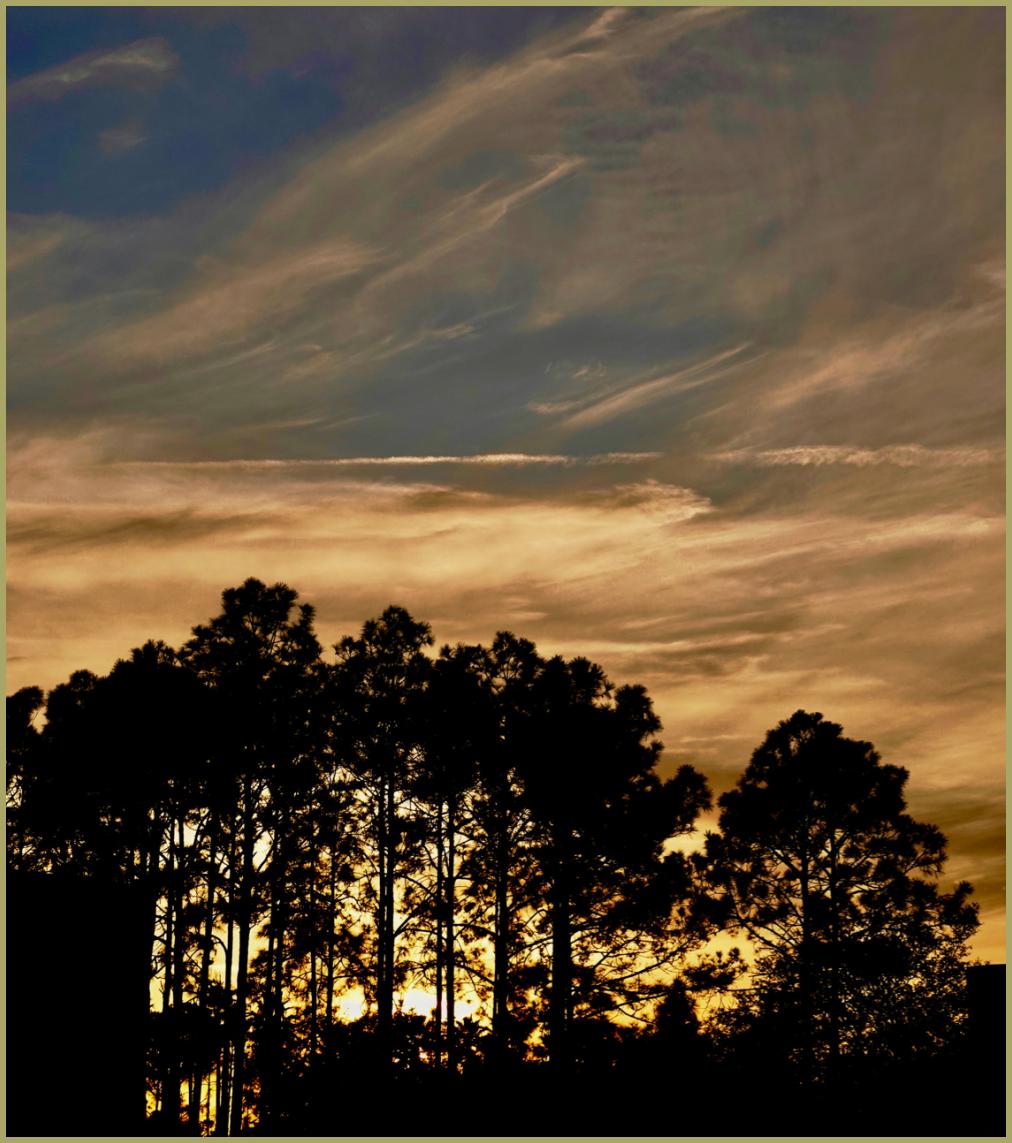 Floridian Sunset