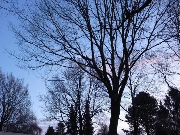 Sunrise 16 januari 2012