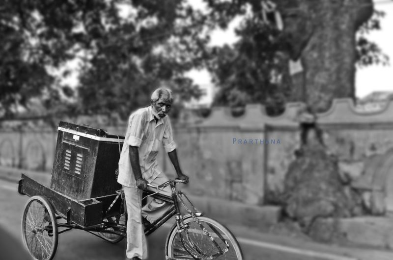 Cycle Rickshaw, Lucknow,India