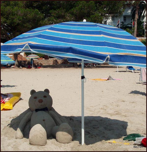Pecuche de arena // Sandy teddy bear