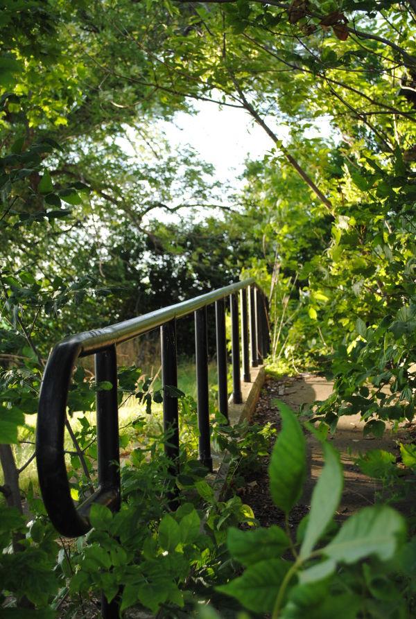 Overgrown Ramp