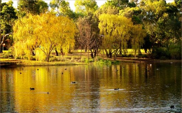 Yellow Glowing Lake by Craig White AUS