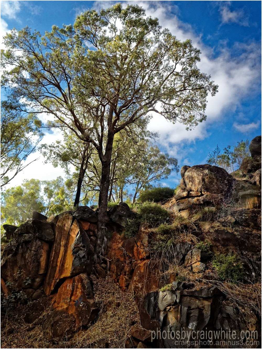 Rocky Bluff, Blackwood River by Craig White AUS