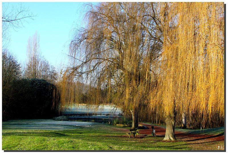 Le golf de villarceaux (95) en hiver.