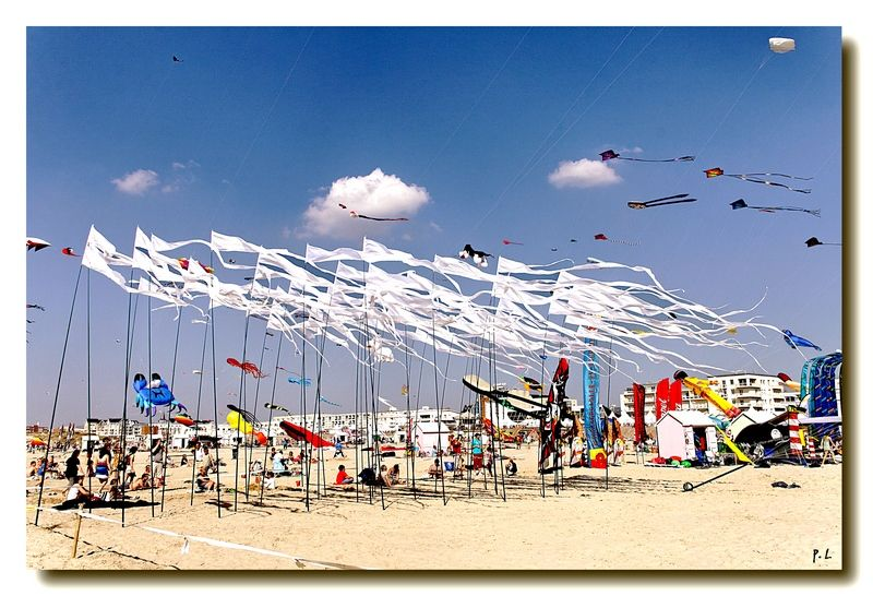 La plage de Berck -25è rencontre de cerfs-volants-
