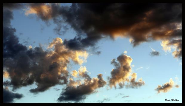 Ciel contrasté