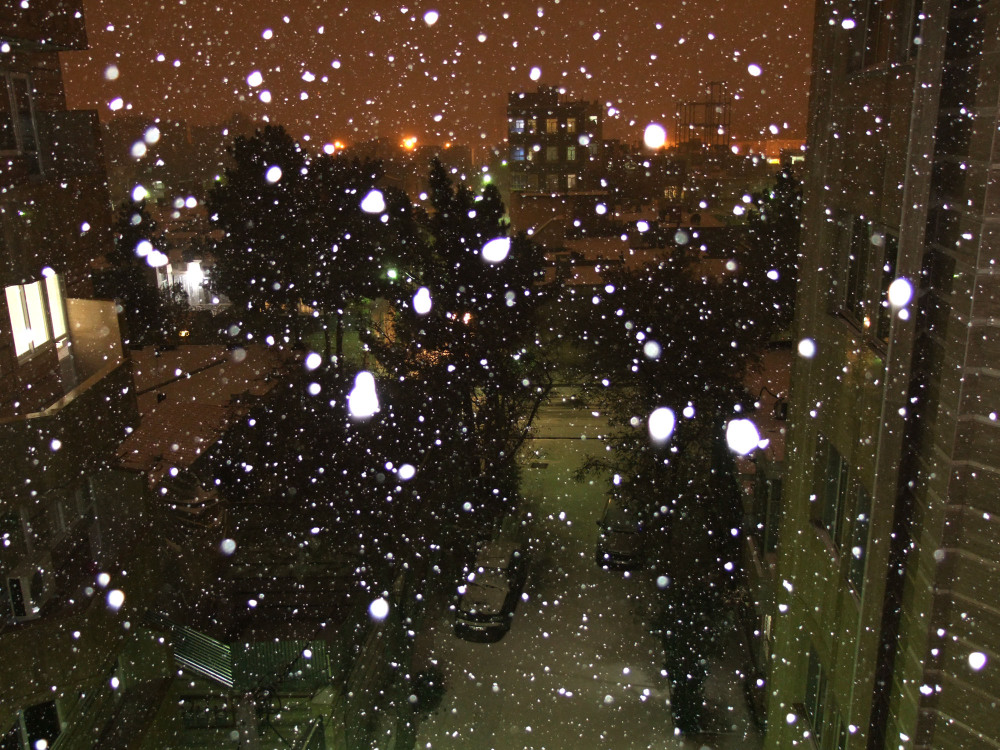 Snow, Night, Flash - 2