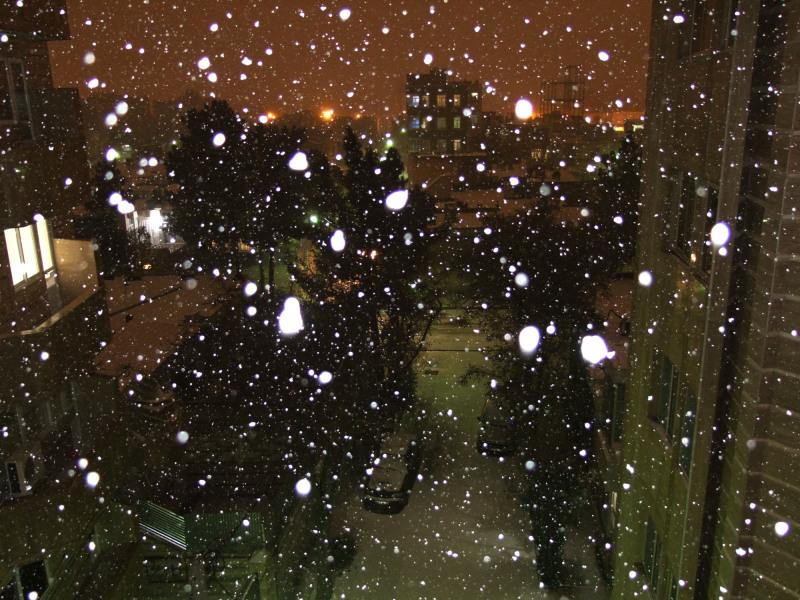 Snow, Night, Flash - 2