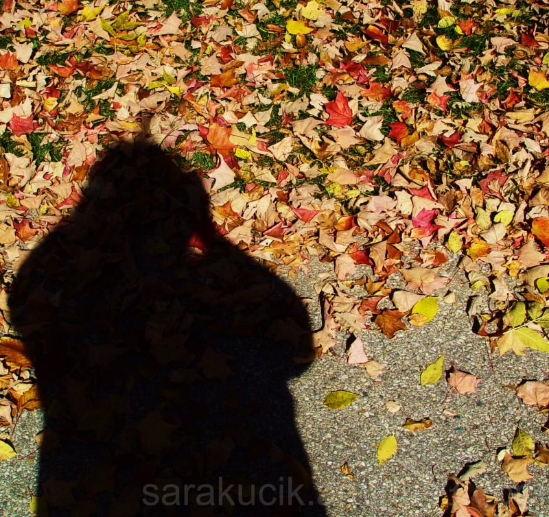 Me and the leaves