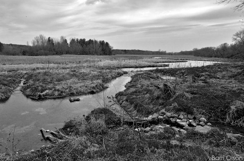 Coles Conservancy. Token Creek Watershed