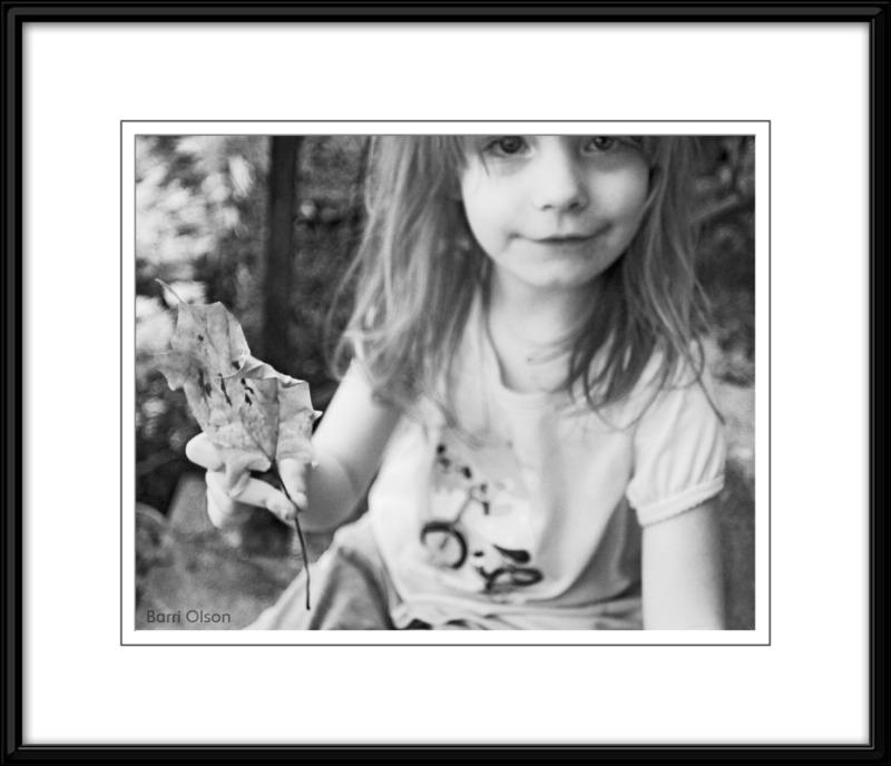 Lilli's Leaf