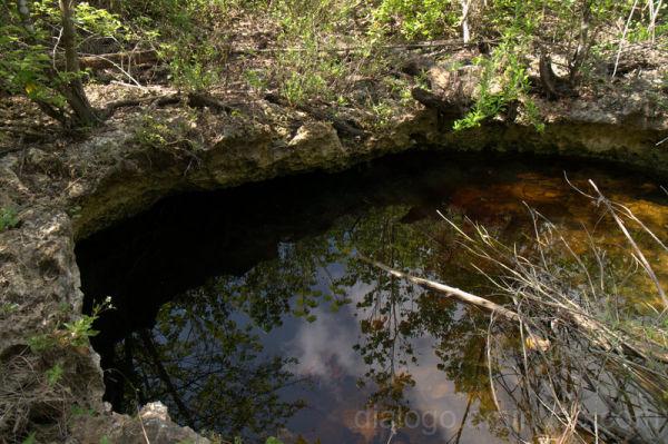 Cenote Cienaga Zapata Cuba
