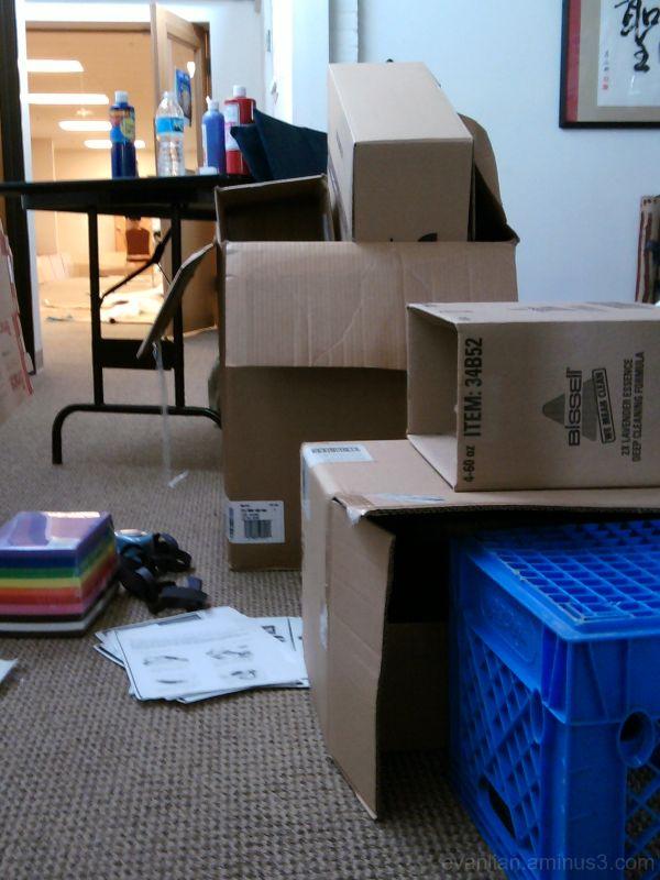 Cardboard & Chaos