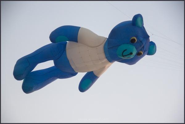 flying kite(?!)