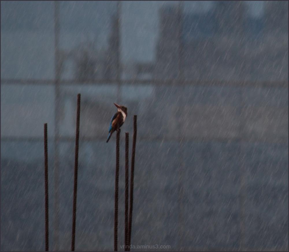 its raining!!