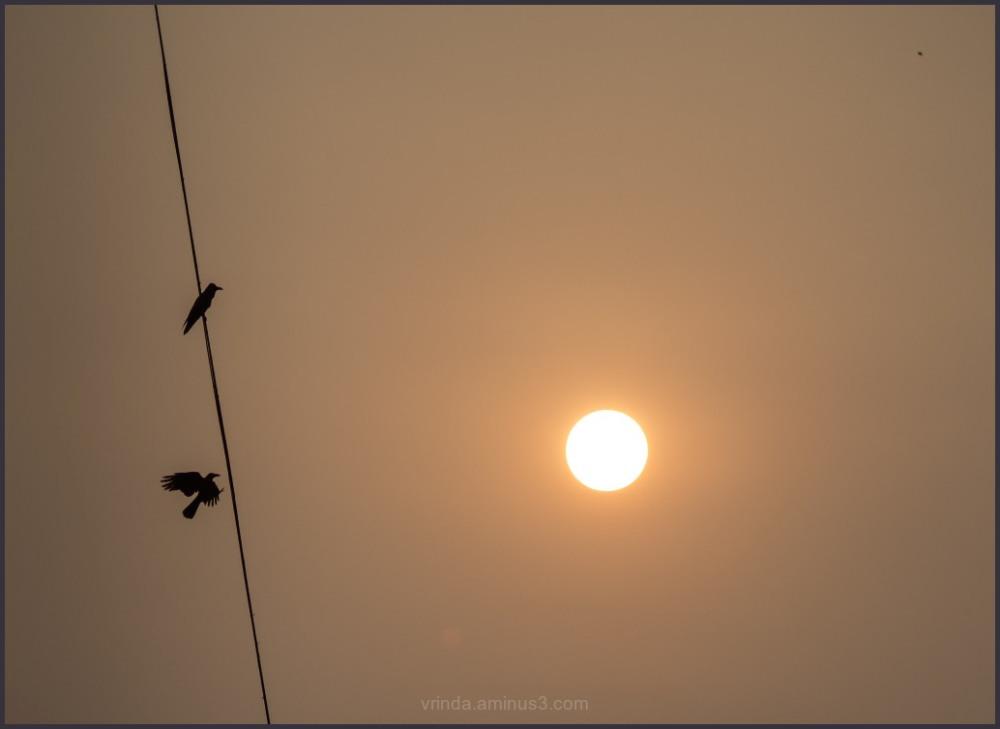 watching sun setting