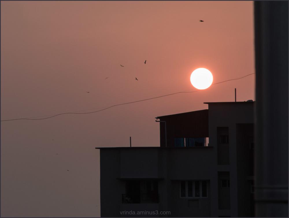 acrobatic sun