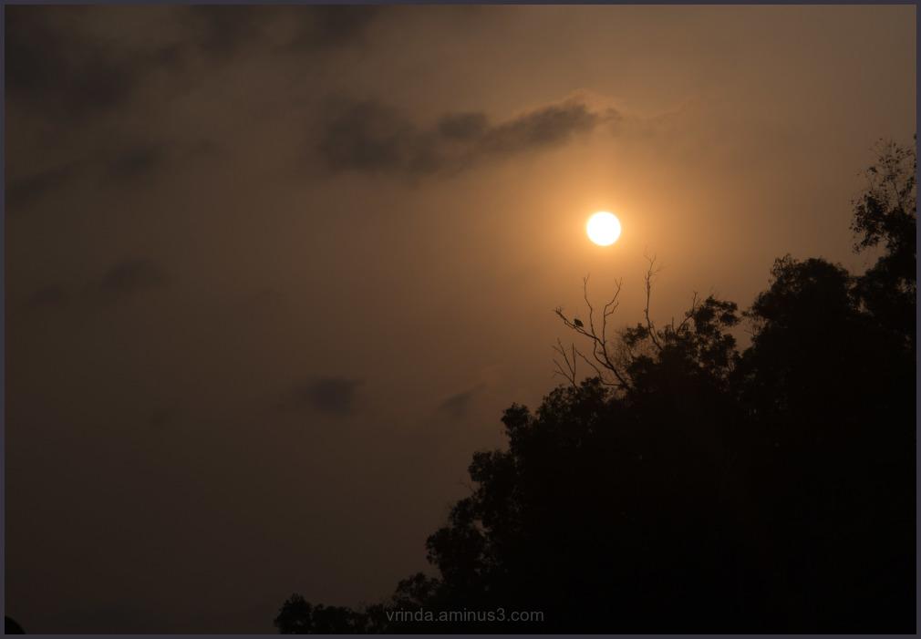 @sunset