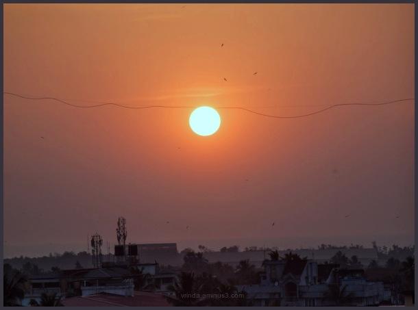 acrobat sun