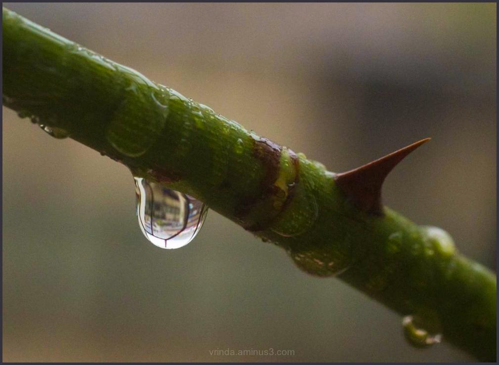 Rain and pain