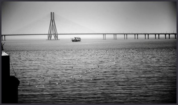 sea links