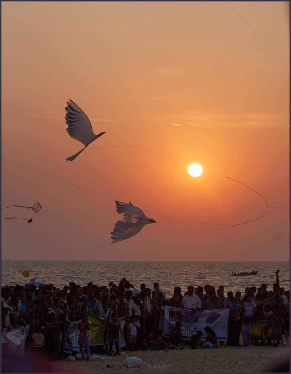 International kite festival 2012