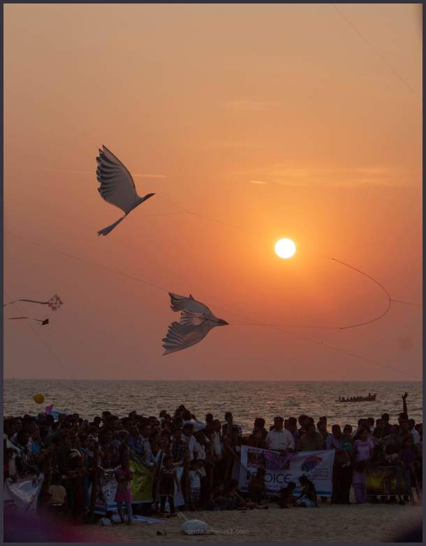 International kite festival 2012