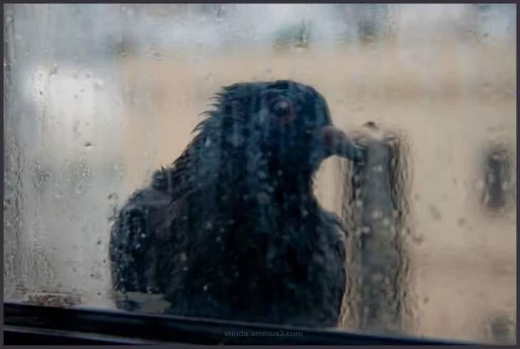 Its raining outside