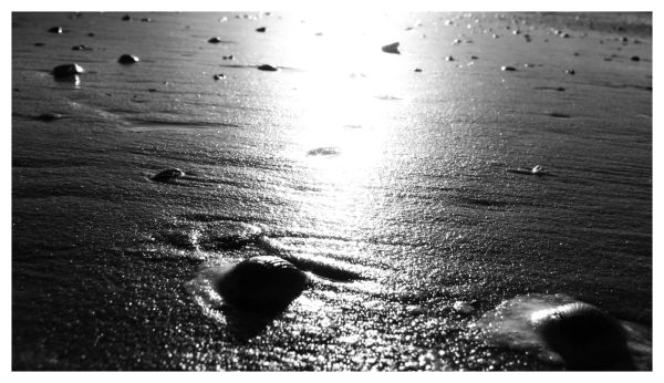 sea of light