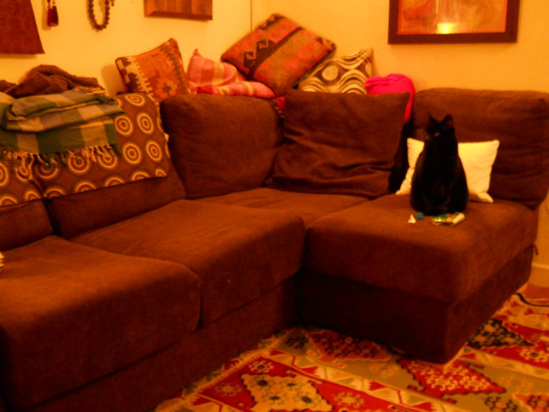 Patrick's sofa