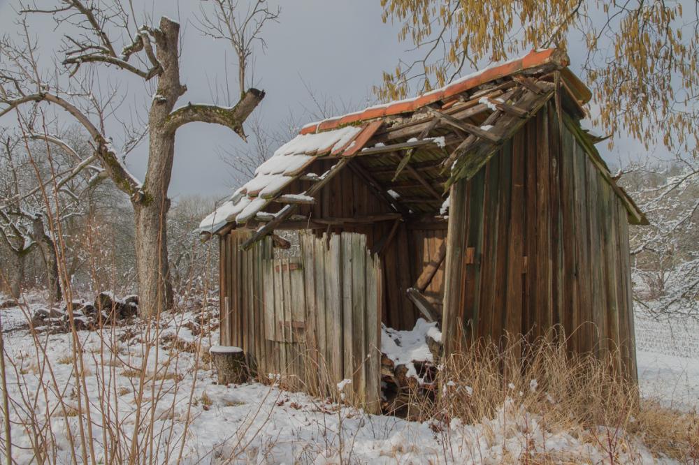winter impressions VII