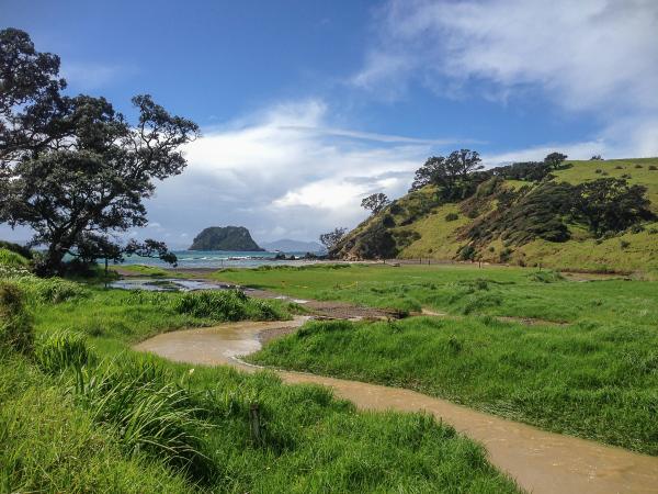 New Zealand Green 2