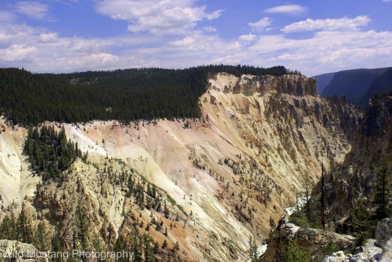 Canyon Yellowstone