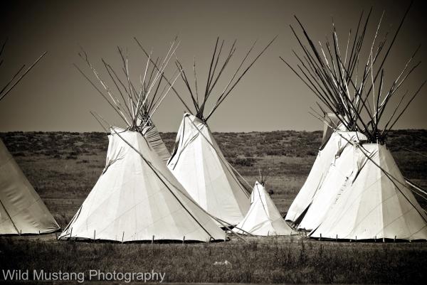 Tee pee    Prairie