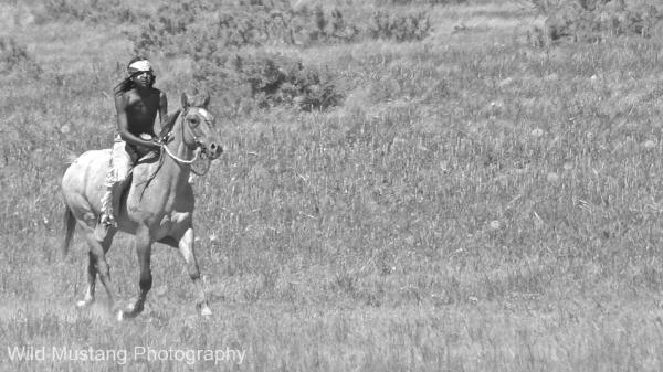 Native American Warrior   Horse