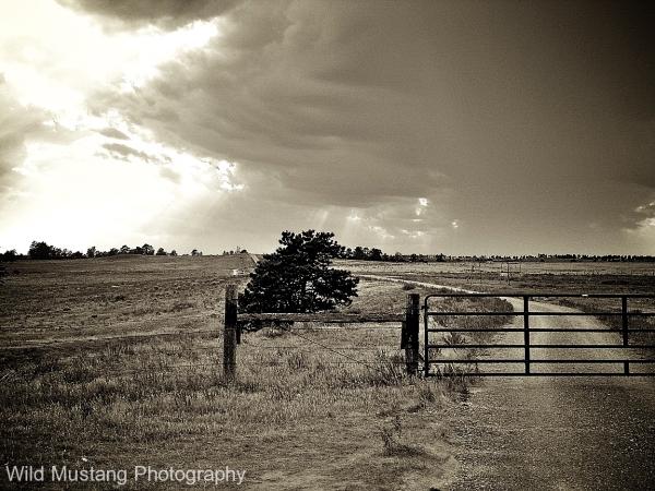 Road Prairie