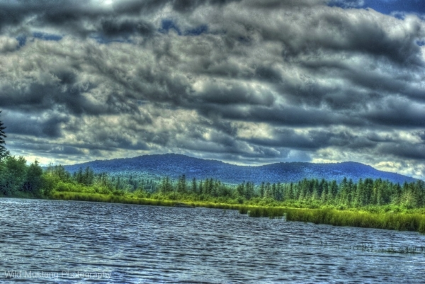 marshes   water   mountain   trees    HDR