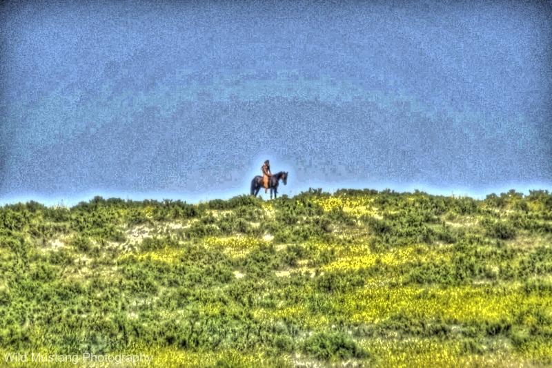 Native American Warrior   Horse  HDR