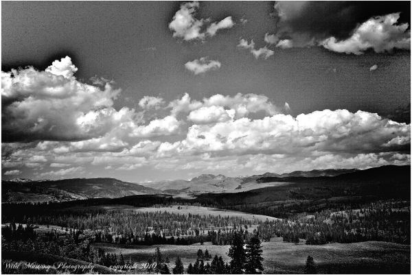 moutain   Prarie   clouds  trees