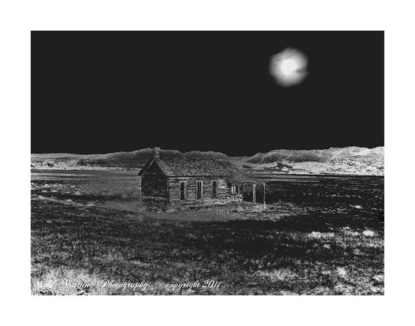 house   prairie   grasses